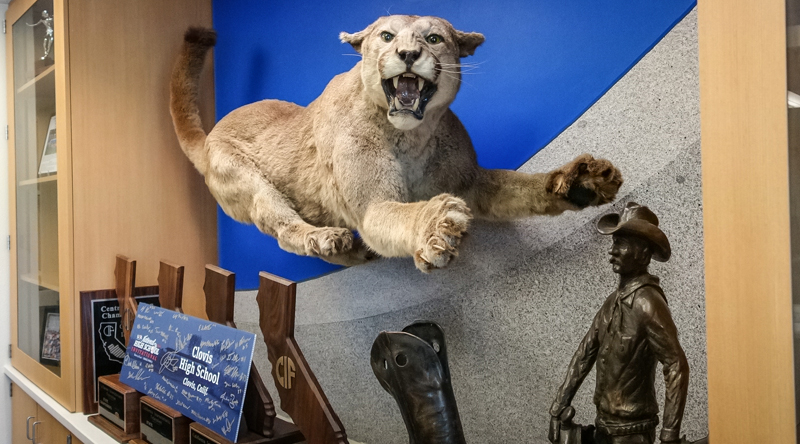 Stuffed Cougar